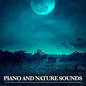 Piano and Nature Sounds: Calm Music and Forest Sounds and Bird Sounds For Relaxation, Deep Sleep, Spa, Studying, Massage, Focus, Concentration, Stress Relief and Sleeping Music