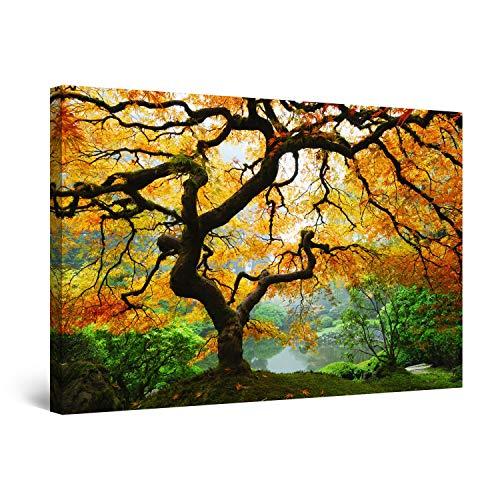 Startonight Bilder Ahorn im Herbst, Leinwandbilder Moderne Kunst, Natur Wanddeko Kunstdrucke, Wandbilder XXL 80 x 120 cm, Tag Nacht Bild