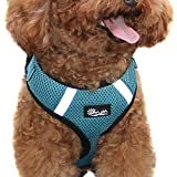 Adjustable and Comfortable Step-in Air Pet Harness for Small or Medium Dogs and Cat by Oleh-Oleh (S, Blue)