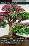 Small and Charming: How To Take Care of Bonsai?