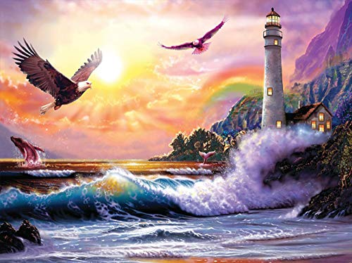 Bimkole 5D Diamond Painting Kits Eagle Sea Rainbow Sunset, Full Drill Art DIY Rhinestone Embroidery Set Paint with by Number Kits Cross Stitch Home Wall Craft Decoration (12x16inch)