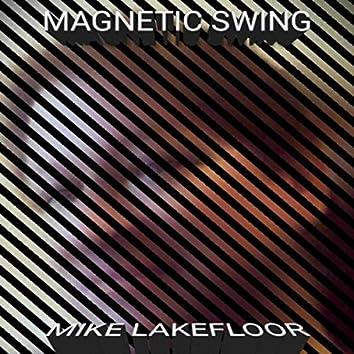 Magnetic Swing