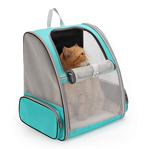 Lollimeow Pet Carrier Backpack for Dogs and Cats,Puppies,Fully Ventilated Mesh,Airline Approved,Designed for Travel, Hiking, Walking & Outdoor Use (Mesh Green-M)
