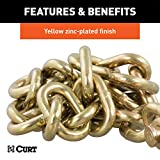 CURT 80304 35-Inch Trailer Safety Chain with 5/16-Inch Clevis Snap Hook 18,800 lbs. Break Strength