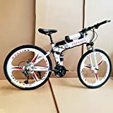 Acptxvh Electric Bicycles for Adults, 360W Aluminum Alloy Ebike Bicycle Removable 36V/8Ah Lithium-Ion Battery Mountain Bike/Commute Ebike,White