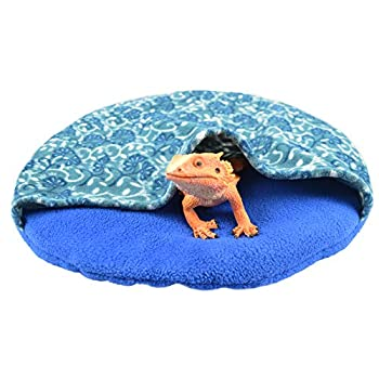 Best bearded dragon hides Reviews