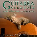 Música para la Tranquilidad. Guitarra Española Con Efectos Relajantes