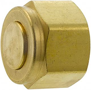 1 Inch Size Parker Hannifin 6108-16 Series 6100 Brass Dust Cap for Nipples