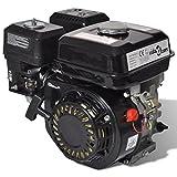 vidaXL <span class='highlight'>Petrol</span> Engine 6.5HP 4.8kW Black Gasoline Recoil Start Generator Motor
