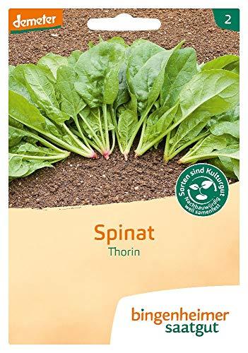 Bingenheimer Saatgut Spinat Thorin demeter bio für 10-12 m²