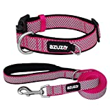 azuza Reflective Dog Collar and Leash Set, Padded Collar with Matching Leash for Small Medium and Large Dogs