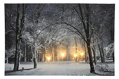 zeitzone LED Bild Schneelandschaft Park Weihnachten Winterlandschaft Beleuchtet 38x58cm