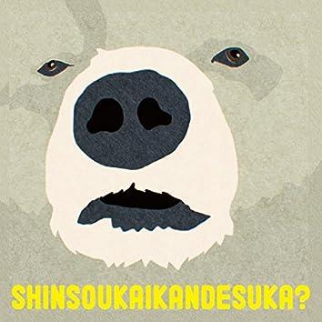 Shinsoukaikandesuka?