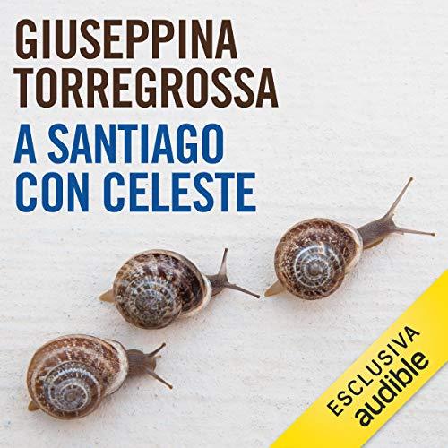 A Santiago con Celeste copertina