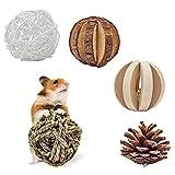 5 piezas Juguetes para Masticar Conejos, Masticación Mascota Juguete Mascotas Bolas de Limpieza de Dientes para Hámster, Cobayas, Jerbos, Loros
