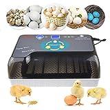 MYZZ Incubatrici per Uova con Tornitura Automatica - 12 Uova Macchina per Cova Pollame Incubatrici Digitali Generali Allevatore per Cova Pollo Anatra Oca Uova di Quaglia Uccelli