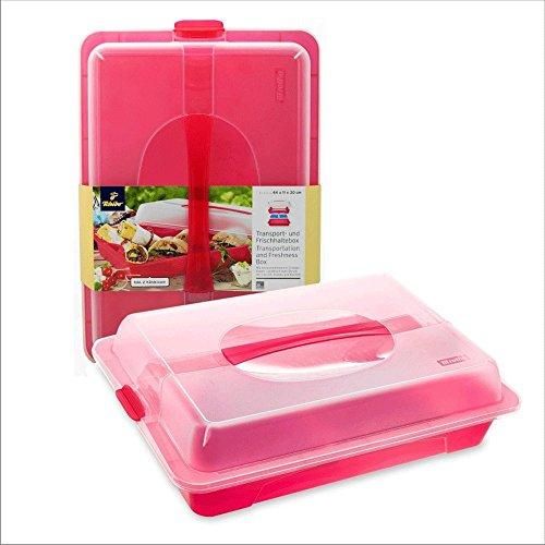 TCM Tchibo Transport und Frischhaltebox Picknick Kuchen inkl. 2 Kühlkissen