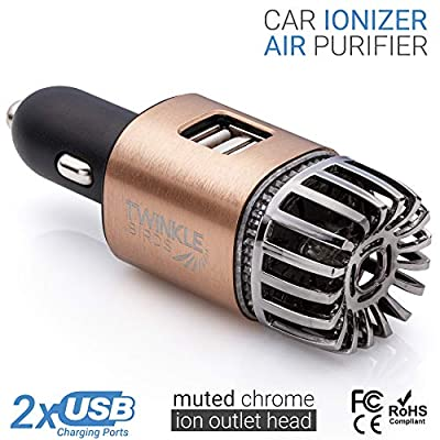 TWINKLE BIRDS Car Air Purifier Ionizer - 12V Plug-in Ionic Anti-Microbial Car Deodorizer with Dual USB Charger - Smoke Smell, Pet and Food Odors, Allergens, Viruses Eliminator for Car