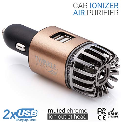 Air Ionizer with USB Ports Car Gadgets