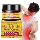 Schmerzlinderung Creme,Pain Relief Cream,Schmerzlindernde Einreibung für Gelenkschmerzen Rücken Knie Hände Hals Füße Muskelkater
