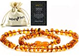 Baltic Amber Necklace (Unisex) 13 inch. Natural Amber from Baltic Region, Genuine Amber