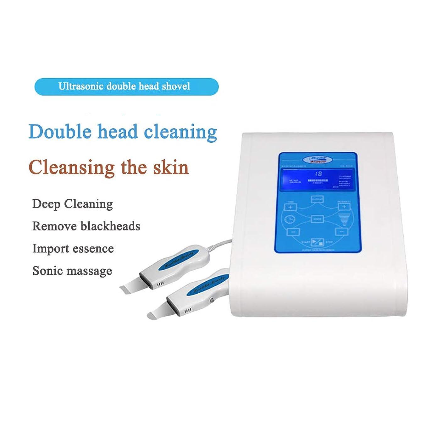 超音波美容機器、皮膚美容機にきびにきびシャベル楽器電子美容機器ダブルヘッドショベルに剥離
