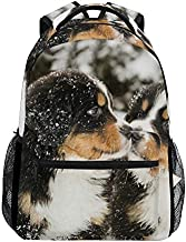 School College Backpack Rucksack Travel Bookbag Outdoor Bernese Mountain Dog