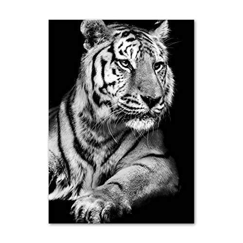 Shentop Vintage StoffmalereiSingle Panel LeinwandDekorative MalereiSchwarz Weiß Elefant Eule Panda Deer Tiger Tiere Leinwand 5D DIY Diamant Malerei Stickerei Mosaik Poster Wanddekor Art50 * 70 cm