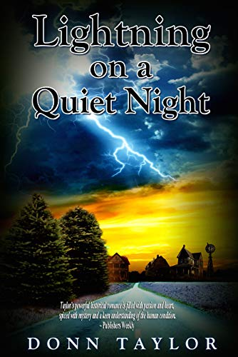 Lightning on a Quiet Night by [Donn Taylor]