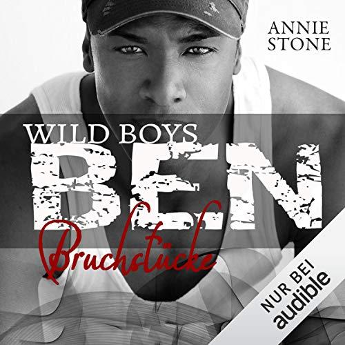 BEN - Bruchstücke audiobook cover art