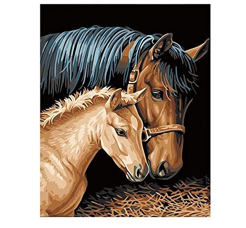 Bawangbieji Malen Nach Zahlen Kits Pferde pflegen Anfänger Hand gemalt Abstraktion Leinwand Ölgemälde Geschenk für Erwachsene Kinder Kits Home Haus Dekor 40x50cm Rahmenlos