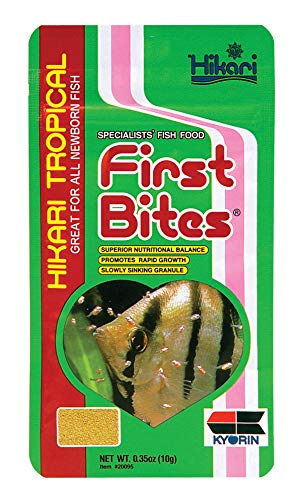 angelfish baby food - 5