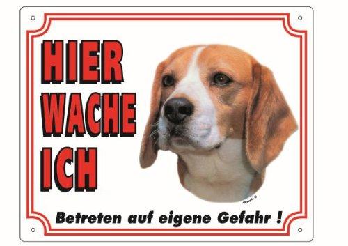 Nobby Warntafel Beagle
