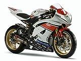 Vulturbike Kit Completo Pegatinas Yamaha R6 Cup Racing