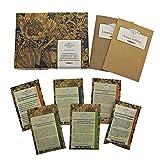 Piante esotiche - set regalo di semi con 6 particolari piante tropicali e subtropicali