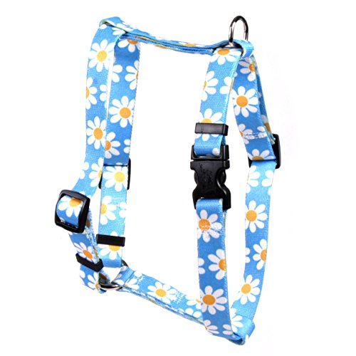Yellow Dog Design Blue Daisy Roman Style H Dog Harness, Small/Medium