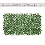 ECOOPTS Artificial Photinia Ivy Leaf Expandable/Stretchable Privacy Fence Screen, Single Side Leafs and Vine Decoration for Outdoor, Garden, Yard, 1 Pack