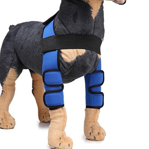 AmaMary hunde gelenkschutz, Hund Ellenbogenschutz Extra unterstützende Hundehalsband Hinterbein Sprunggelenk Wrap schützt Wunden (L, Blau)
