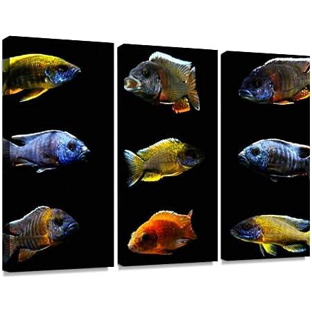 AQUALOG Pikes Cichlids + Other Large Cichlids Poster Cichlids 1