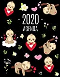 Perezoso Agenda 2020: Planificador Diaria | Ideal Para la Escuela, el Estudio y la Oficina | Enero a Diciembre 2020