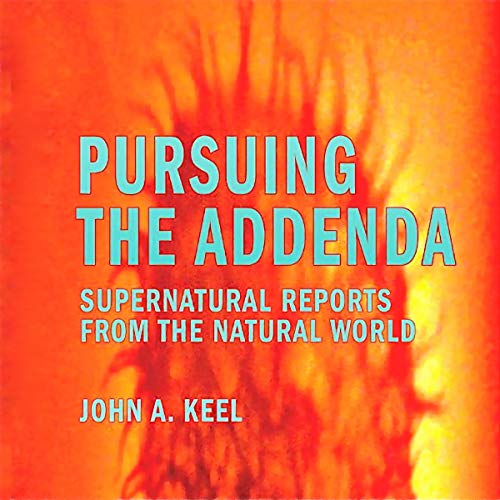 Pursuing the Addenda audiobook cover art