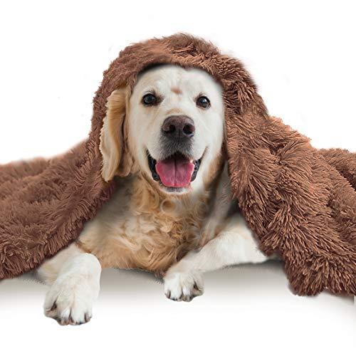 NIBESSER Hundedecke Flauschig Plüsch Katzendecke Super Softe Doppeilseitige Haustierdecke Super Softe Warme und Weiche Decke Hundedecke Katzendecke