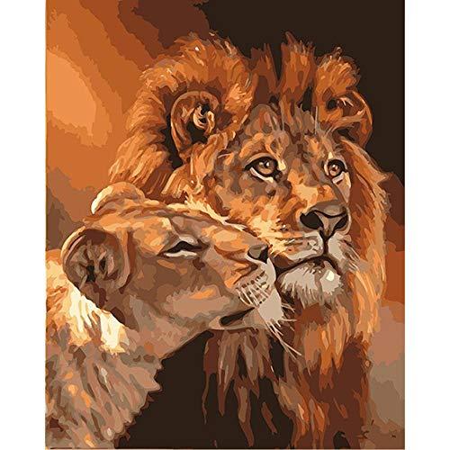 ZHXX Schilderen door cijfers voor volwassenen op canvas 40X50Cm DIY grote en kleine leeuw dier Canvas bruiloft decoratie kunst foto cadeau With Frame
