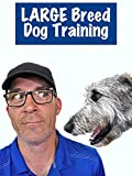 Large Breed Dog Training
