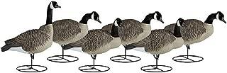 Dakota Decoy Signature Series Flocked Goose Decoys 6 Pack, Sentry
