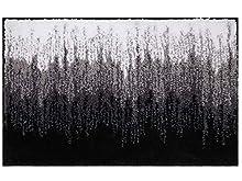 Famibay Alfombrilla de Baño Antideslizantes Alfombra Microfibra Absorbente Agua Suave Tapete de Baño de Lavable a Máquina para Baño Dormitorio Cocina