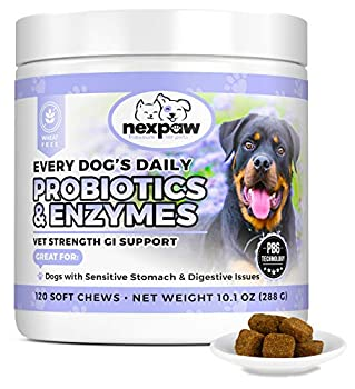 NEXPAW Probiotics for Dog Digestive Health - Relief Diarrhea Gas Bloating Constipation Upset Stomach - Safe Natural Canine Probiotic Gut Chewable Medicine 120 Wheat-Free Chews Dogs & Puppy Loves