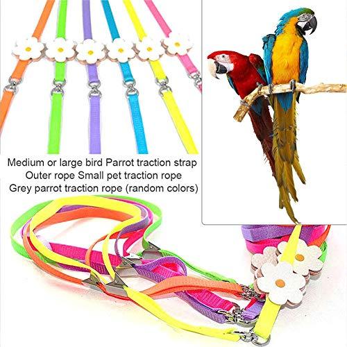 Vogel Geschirr Harness Training Seil Verstellbares Vogelgeschirr und Leine bissfest für Vögel, Papageien, Graupapageien, Halsringenten, Sittiche - Zufällige Farbe