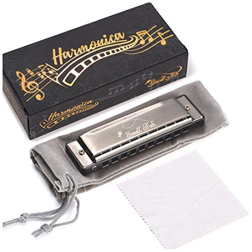 Harmonica for Toddlers, Kids, and Adults, Musical Instrument for Beginners with 10 Holes and 20 Notes, Stainless Steel Diatonic Mouth Organ Set Complete with Storage Bag, Blues Harp for Boys & Girls