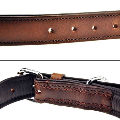 Schnüffelfreunde Hundehalsband aus Leder (M – 28-36cm, Braun) - 3